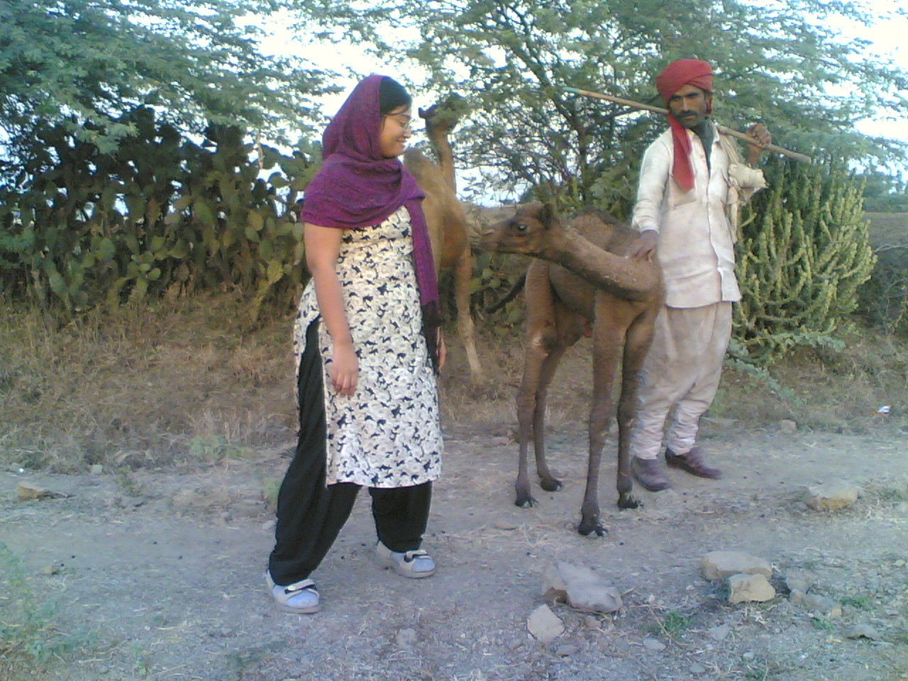 Pia with the baby camels