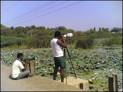 Bird Photography at Ranjitsagar