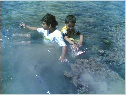 Pruthvi & Aadil having a dip at Pirotan